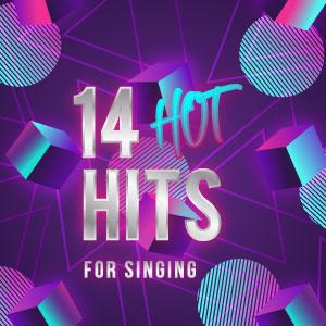 14 Hot Hits Backing Tracks